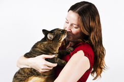 Feline and Owner Stock Photography