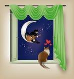 Feline serenade Stock Images