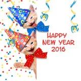 Feliz Año Nuevo 2016 Imagenes de archivo