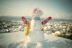 Feliz Año Nuevo con el muñeco de nieve Pares felices de Snowmans Celebración de Snowmans Muñeco de nieve en peluca, manoplas y bu Foto de archivo libre de regalías