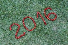 Feliz Año Nuevo con el Pitanga, fruta brasileña típica Foto de archivo