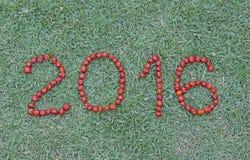 Feliz Año Nuevo con el Pitanga, fruta brasileña típica Imagen de archivo libre de regalías