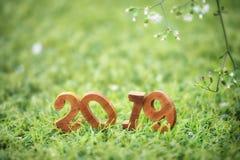 Feliz Año Nuevo 2019, concepto de la naturaleza Foto de archivo