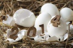 Feliz Año Nuevo 2014, concepto de los huevos Imagen de archivo