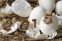 Feliz Año Nuevo 2015, concepto de los huevos Fotografía de archivo