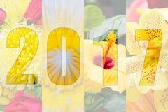 Feliz Año Nuevo 2017 en tema de la flor Imagen de archivo libre de regalías