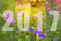 Feliz Año Nuevo 2017 en tema de la flor Imagenes de archivo