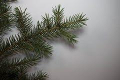 Feliz Año Nuevo y la Navidad Fotos de archivo libres de regalías
