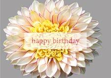 Feliz cumpleaños Fotos de archivo
