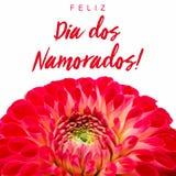 Feliz Dia dos Namorados!文本用葡萄牙语:愉快的Valentine's天!并且红色和桃红色大丽花花 免版税图库摄影