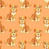 Feliz engraçado do teste padrão sem emenda do cão do marrom da aquarela ilustração stock