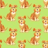 Feliz engraçado do teste padrão sem emenda do cão do marrom da aquarela ilustração do vetor