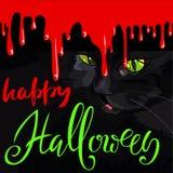 Feliz Halloween Cat Cute Vector Design negra Gotas de sangre del vector Fotos de archivo libres de regalías