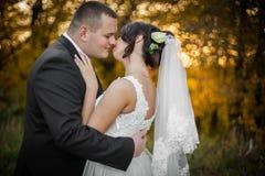 Feliz magnífico elegante romántico apacible por completo de los pares del amor Imagen de archivo