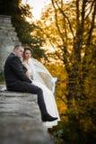 Feliz magnífico elegante romántico apacible por completo de los pares del amor Foto de archivo