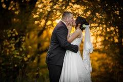 Feliz magnífico elegante romántico apacible por completo de los pares del amor Fotos de archivo libres de regalías