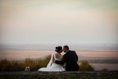 Feliz magnífico elegante romántico apacible por completo de los pares del amor Foto de archivo libre de regalías