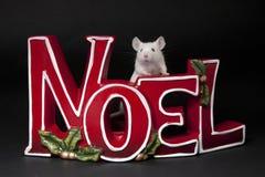 Feliz Natal Fotografia de Stock Royalty Free