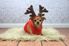 Feliz Natal Fotografia de Stock