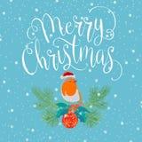 Feliz Natal com pássaro Fotografia de Stock