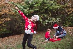 Feliz Natal e boas festas E fotos de stock royalty free