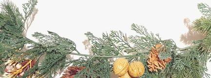 Feliz Natal Garland With Nature Ornaments Decoration imagens de stock royalty free