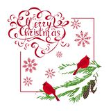 Feliz Navidad que pone letras roja de la bandera de la tipografía, cardenales rojos en árbol de abeto en blanco stock de ilustración