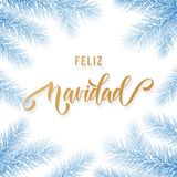 Feliz Navidad Spanish Merry Christmas hand drawn golden calligraphy in fir branch decoration and Christmas blue frost. Vector wint. Er New Year holiday greeting Stock Photos