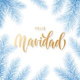 Feliz Navidad Spanish Merry Christmas hand drawn golden calligraphy in fir branch decoration and Christmas frozen snow garland. Ve. Ctor winter New Year holiday Stock Images