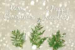 Feliz Navidad y Año Nuevo tipográficos en fondo del día de fiesta con la decoración de Navidad, la rama del árbol de abeto y la n Foto de archivo libre de regalías