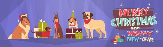 Feliz Navidad y bandera horizontal de la Feliz Año Nuevo con los perros que llevan la tarjeta de Santa Hats Winter Holidays Greet Foto de archivo libre de regalías
