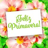 Feliz Primavera 1. Happy Spring flowers background Feliz Primavera flores Royalty Free Stock Images