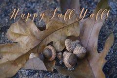` Feliz todo da queda Y! com folhas e bolotas do carvalho fotografia de stock royalty free