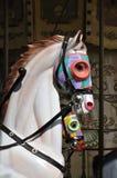 Feliz va el caballo del redondo Imágenes de archivo libres de regalías