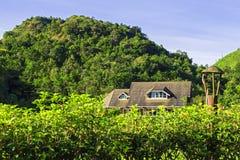 Fell des kleinen Hauses unter Schatten des Hügels im Wald Stockbilder