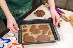 Felled from the blank test for gingerbread in a pan Stock Image