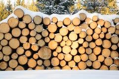Felled bomen, klaar vervoer aan de zaagmolen worden gestapeld die stock foto's