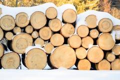 Felled bomen, klaar vervoer aan de zaagmolen worden gestapeld die stock afbeeldingen
