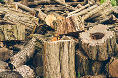 Felled logs, branches and stumps are piled in a heap.  Royalty Free Stock Photos