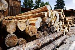 Felled lumber Royalty Free Stock Image