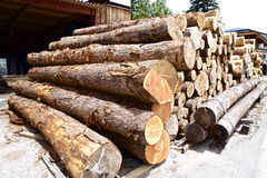 Felled lumber Royalty Free Stock Images