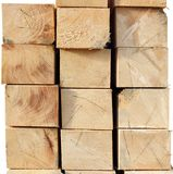 Felled spruce wood Stock Photo