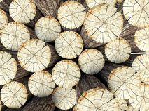 Felled tree stumps, 3d background Royalty Free Stock Photography
