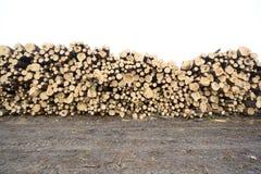 felled trees Στοκ φωτογραφία με δικαίωμα ελεύθερης χρήσης