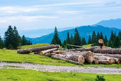 Felled trees near pasture in Slovenia Alps, city Kamnik. Wood in foreground, forest and mountains in background.  royalty free stock photos
