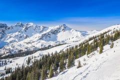 Fellhorn Ski resort, Bavarian Alps, Oberstdorf, Germany Stock Photography