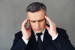 Felling exhausted. Stock Images