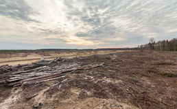 Felling forests near the sand pit Royalty Free Stock Photography