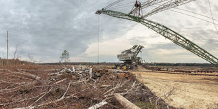 Felling forests near the sand pit Royalty Free Stock Photo