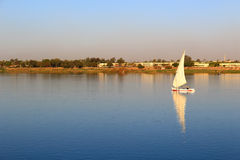 Felluca with white sails. Sailing along the Nile River in Egypt Royalty Free Stock Photography